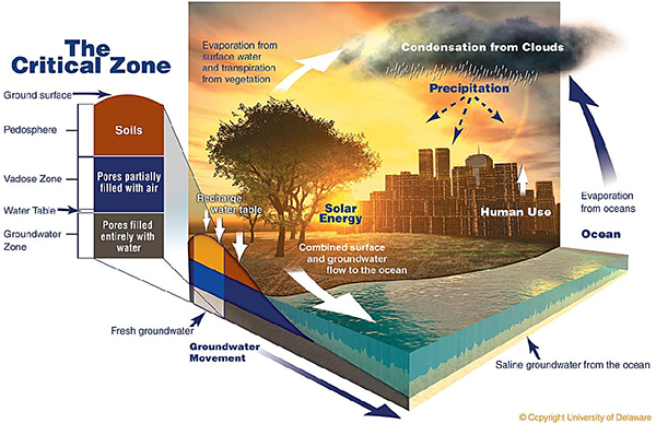 A diagram of the critical zone and the biogeochemical processes within it